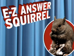 E-Z Answer Squirrel