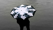 Pluvio Art Umbrellas
