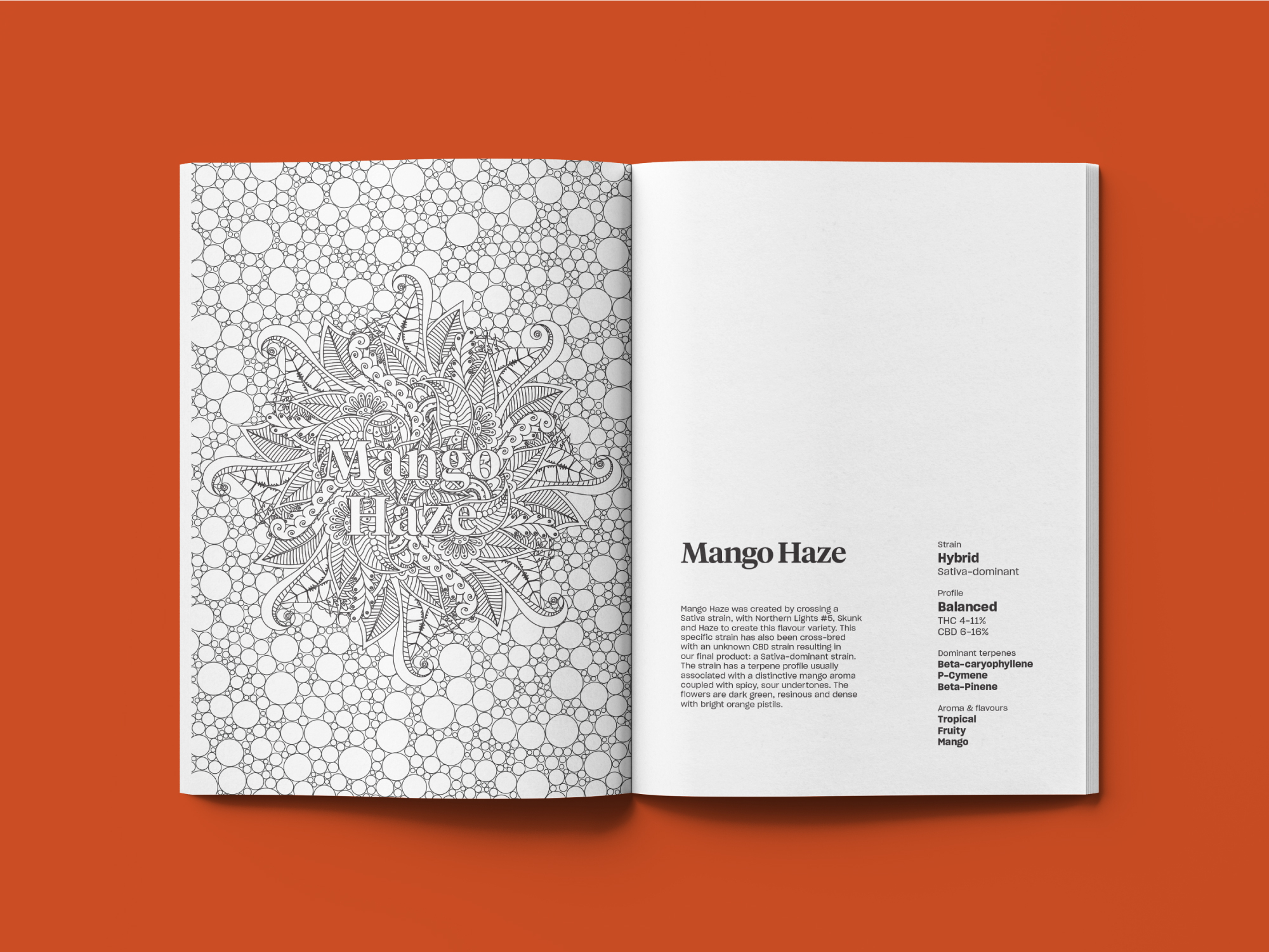Smaller_Release_Color_ColouringBook1